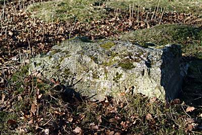 The Dogs grave stone